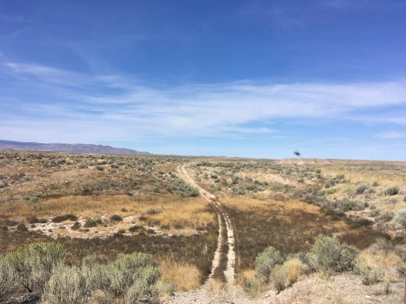 Wagon trail ruts from the Oregon Trail