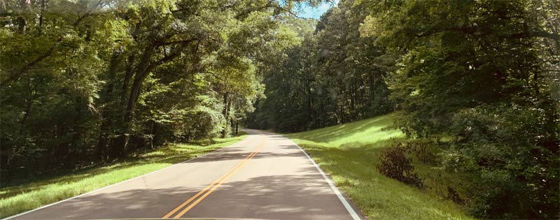 Beautiful Natchez Trace in Mississippi